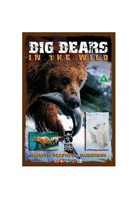 Big Bears In The Wild [DVD] -  CD AWVG The Fast Free Shipping