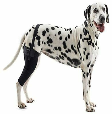Dog Knee Brace Therapeutic ACL Hock Support Protector Compression Wrap All Sizes