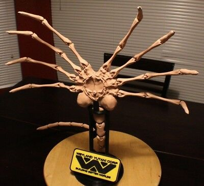 """Life Size Pose-able Alien Facehugger model with stand - 40"""" x 23"""""""
