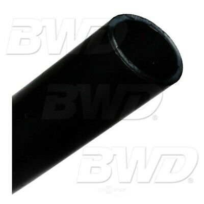 Vapor Canister Vent Solenoid BWD CPV19