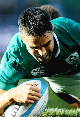 Conor MURRAY Signed 12X8 Photo Ireland MUNSTER & LIONS Rugby AFTAL COA (2126)