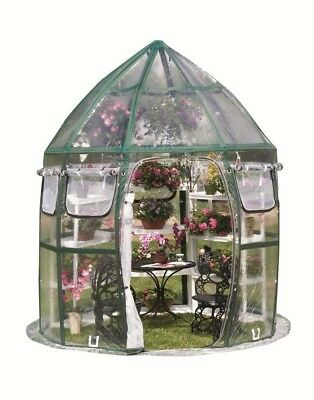 FlowerHouse Conservatory Pop-Up Greenhouse Clear PVC Outdoor Gardening House