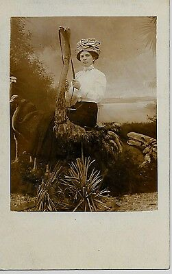 Crazy RPPC - Woman Poses on Ostrich in Studio Postcard 1904 - 1918