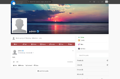 Create Your Own Social Network Website - (Free Installation + Hosting Included)