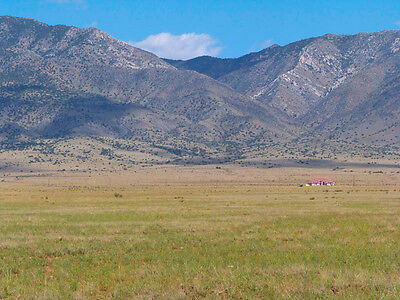 """Rare 8 Acre New Mexico Ranch """"tierra Valley""""! On Power! Cash Sale! No Reserve!"""