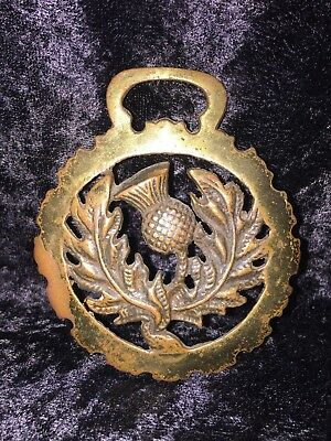 Antique Horse Brass Harness Medallion Draft Tack Ornament: Floral center