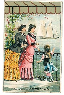 1880s trade card Domestic Sewing Mach D S Andrus & Co Williamsport PA dealer