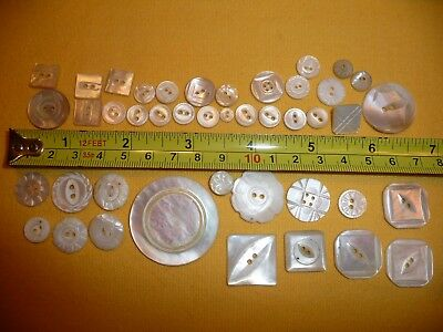 Collectible Antique Vtg Carved Mother of Pearl Shell BUTTON Lot~X Large~Flower