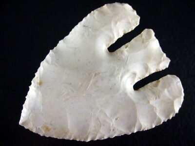 2 7/8 Inch Collector Grade 10 Oklahoma Calf Creek Point Arrowheads COA