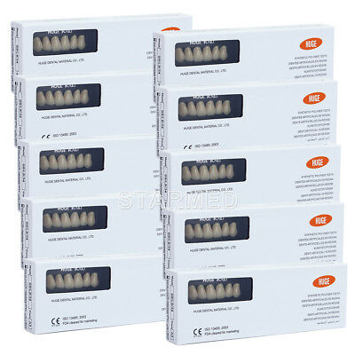 KAILI Dental Synthetic Polymer Resin Teeth A2/A3 PMMA 2 Layers T8/S8 28Pcs/Pack