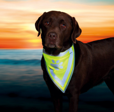 Dog Safety Hi Vis Viz High Visibility Reflective Neon Yellow Bandana Neckerchief