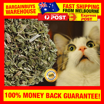 5g Dried Catnip 100% Natural Organic Nepeta cataria Catnip For Cats Kittens