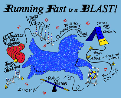 Last of lot RUNNING FAST IS A BLAST tee shirts by Diane Troese- SHELTIE