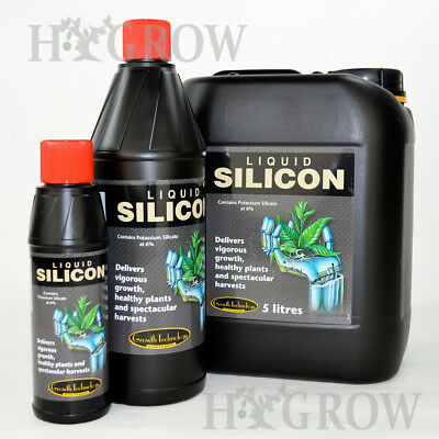 Growth Technology Liquid Silicon Plant Strengthener Additive