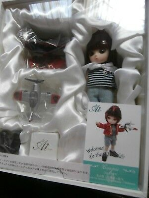 JUN PLANNING AI BALL JOINTED DOLL PULLIP GROOVE INC BJD NEW COREOPSIS Q-722