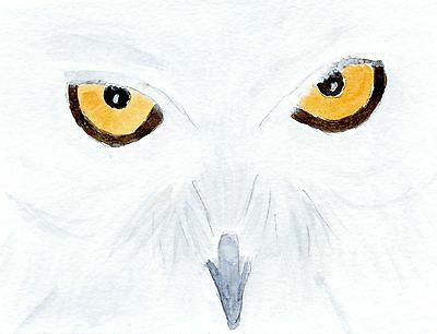 Original mounted watercolour painting - Snowy Owl - 10x8 SALE