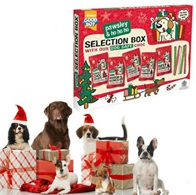 Christmas Festive Xmas Dog Chocolate Choc Selection Box Dog Treat Reward