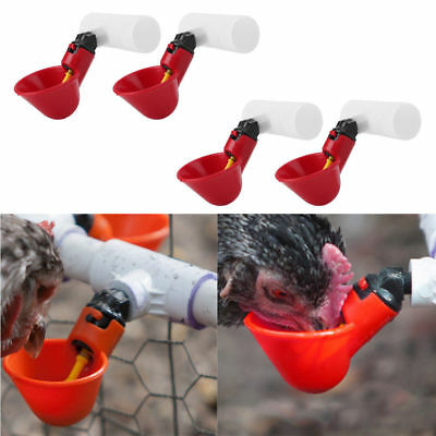 4X Red Poultry Automatic Auto Drinker Water Drinking Cup For Chicken Hen Bird