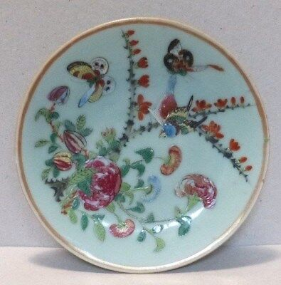 """Antique 5.75"""" Chinese Famille Rose Celadon Plate - 19th Century - (3380)"""