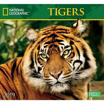 Tigers - National Geographic - 2019 Wall Calendar - Brand New - 182804