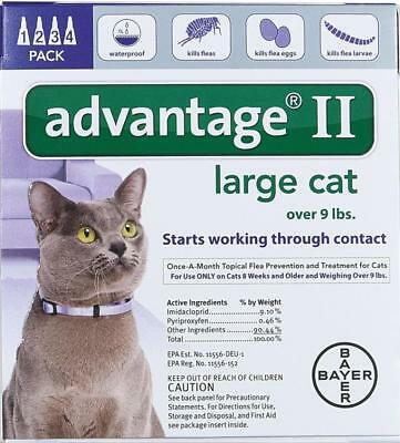 Bayer Advantage II for Large Cats Over 9 Lbs (4 ct) Flea Treatment