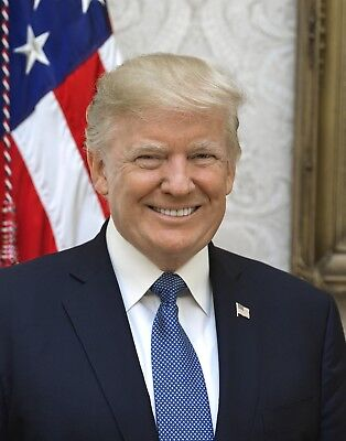 11x14  Official Portrait of President Donald J. Trump-Official White House Photo