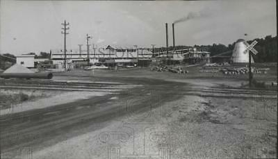 1968 Press Photo R. R. Bedwell sawmill north of Thomasville - abna14411