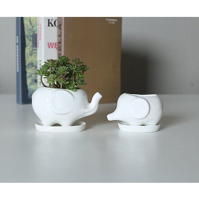 Flower Pot Tray Elephant White Ceramic Container Ceramic Bonsai Garden Decor New
