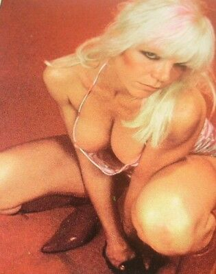 Wendy O. Williams   magazine clippings