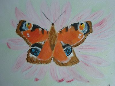 Original Mounted Watercolour Painting - Butterfly 10x12