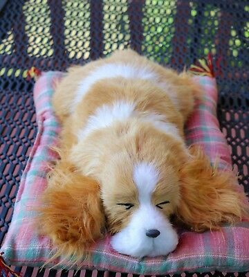 Dog/ Puppy-Laying On Pillow-Real Fur-Rust Colored/white-Sleeping-Life Like-Cute!
