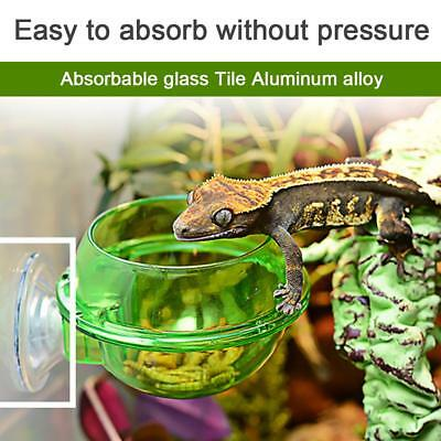 Reptile Feeder With Suction Cup Translucent Anti-escape Dish Bowl for Lizard