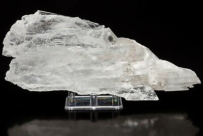 C0256 219mm 771g Clear Selenite Crystal Cluster Gypsum Decor Chihuahua Mexico