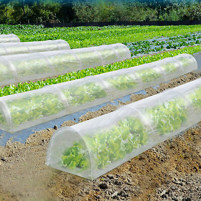 Sunrise Outdoor LTD 2 Ft. W x 16.5 Ft. D Mini Greenhouse