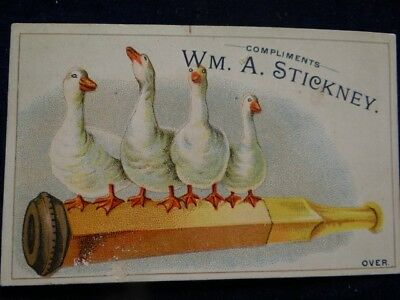 Wm. A. Stickney Cigars & Tobacco St Louis Victorian Trade Card Holder Geese