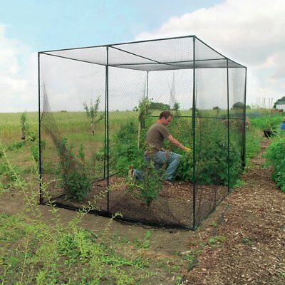 World Source Partners 6.6 Ft. W x 9.1 Ft. D Hobby Greenhouse