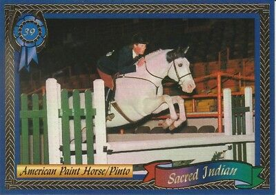 Sacred Indian - World Champion Paint Horse Collector Card