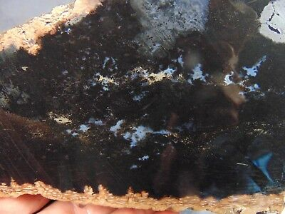 black indonesian palm root agate piece 6.65 lbs