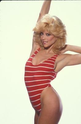 Judy Landers 8x10 Picture Simply Stunning Photo Gorgeous Celebrity #4