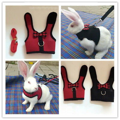Pet Mesh Soft Harness With Leash Small Animal Vest Lead for Rabbit Bunny
