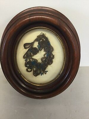 Rare Antique Mourning Human Hair Wreath In Walnut Oval Shadowbox Frame