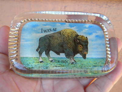 SCARCE Vintage 1901 Pan Am Buffalo Exposition GLASS PAPERWEIGHT - W PITTSTON PA.