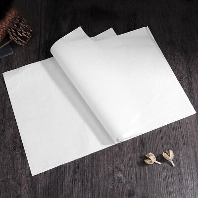 NUOLUX 50 Sheets Chinese Calligraphy Writing Paper Rice Paper Xuan Paper