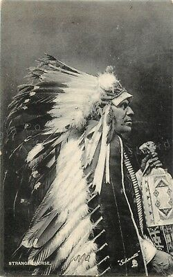 Stranger Horse-Brule Indian Chief-Sioux Native American-Silverette Postcard