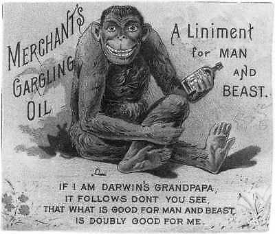 PHOTO ONLY of Trade Card Advertisement,Merchant's Gargling Oil,Liniment,1800s