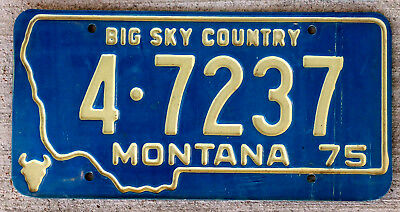 1975 White Incused Lettering on a Blue Montana License Plate #4
