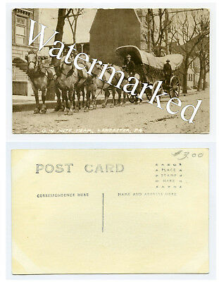 George W Neff Team-Conestoga Wagon-Lancaster Co-Pa-1904-1918-Real Photo