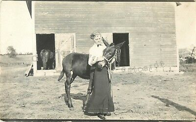 Woman loving on her Mule-Farm Scene-Barn c1910 RPPC Real Photo Postcard