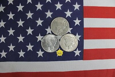 3 - 1923 Silver Peace Dollars - P, D, and S mints - Extra Fine (P112)