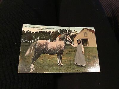 1913 Antique Postcard,Equestrian,Horse,Farmers Heavyweight,Scenes Country Road